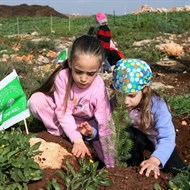Plant a Tree in Israel with KKL-JNF, Heal the Earth