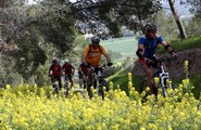 Walking Trails and Bicycle Paths in Israel