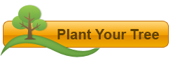 Plant a Tree in Israel Online