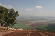 Gilboa Forests - Springs & Valleys in the Lower Galilee