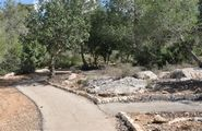 Haruvit Forest - Hiking & Archaeology in Central Israel